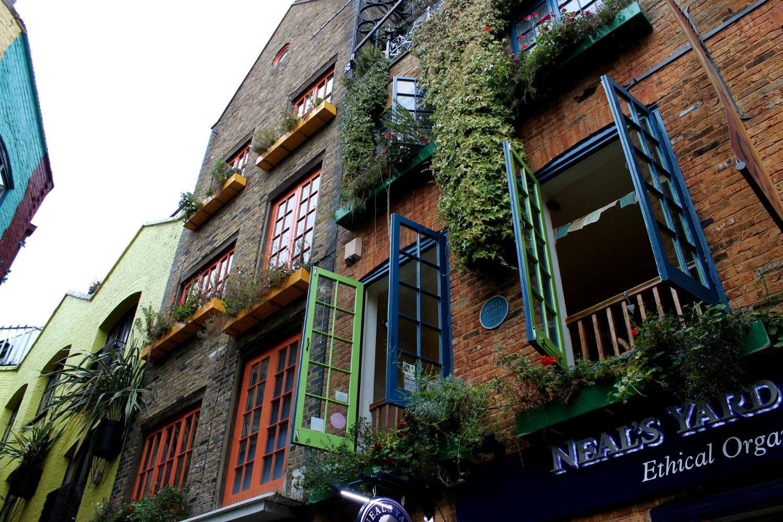 nela's yard rua com casas coloridas e loja de remedios naturais