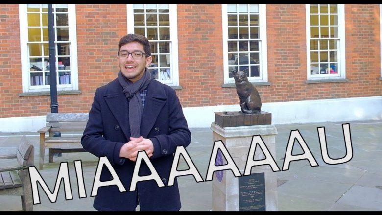 guri in london falando sobre animais famosos de londres com o hodge, gato do dr johnson