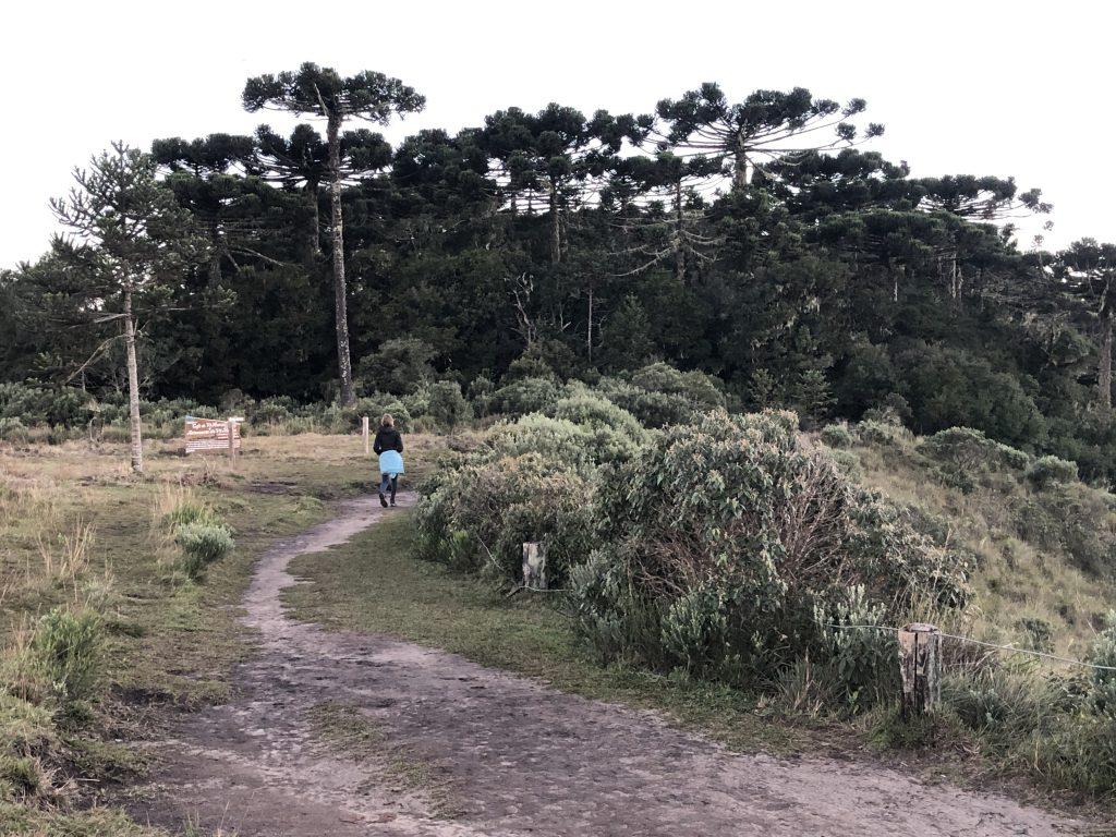 mulher caminhando pela trilha do vertice no cânion Itaimbezinho com estrada fácil de caminhar